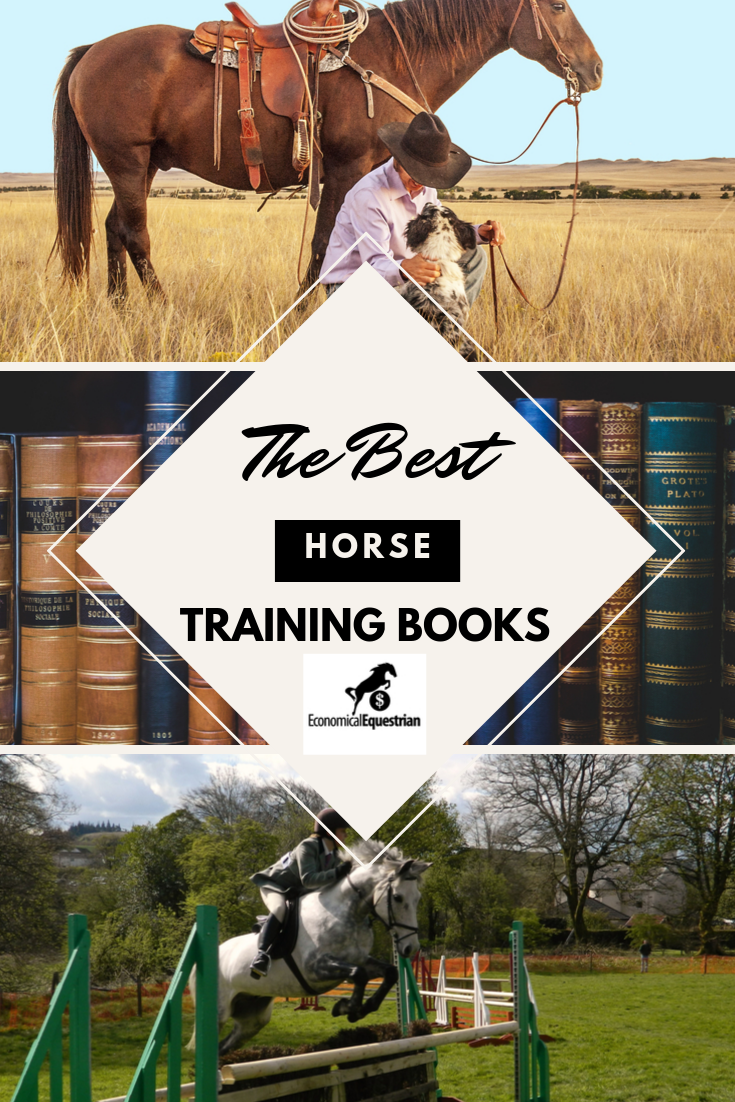 The Top 14 Horse Training Books For Training And Riding Horses